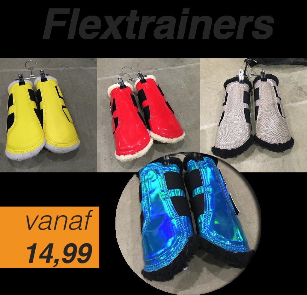 flextrainers-homepage